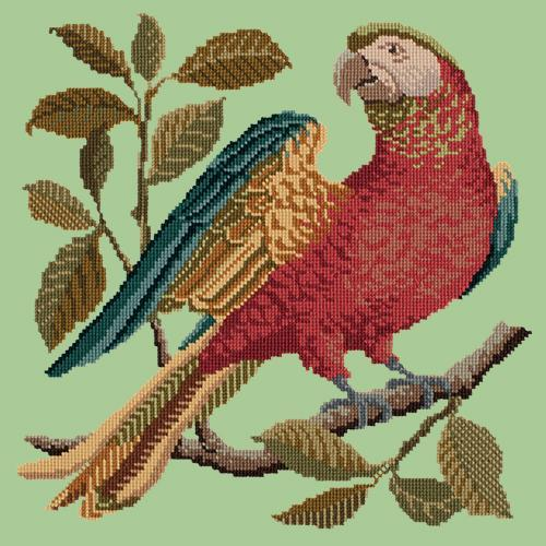 Alister the Parrot Needlepoint Kit Elizabeth Bradley Design Pale Green