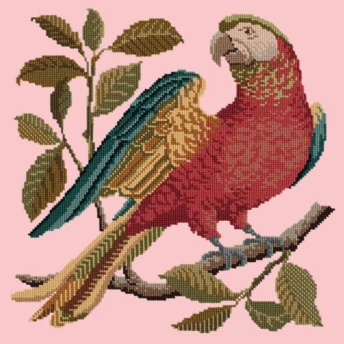Alister the Parrot Needlepoint Kit Elizabeth Bradley Design Pale Rose