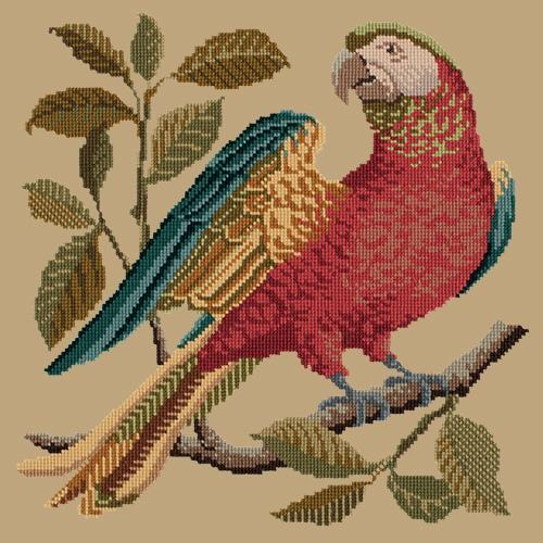 Alister the Parrot Needlepoint Kit Elizabeth Bradley Design Sand