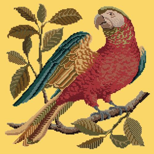Alister the Parrot Needlepoint Kit Elizabeth Bradley Design Sunflower Yellow