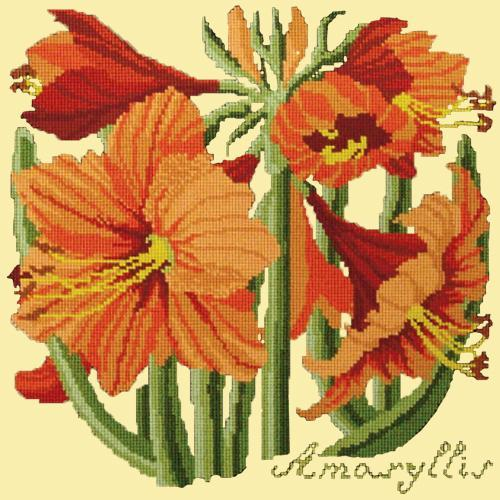 Amaryllis Needlepoint Kit Elizabeth Bradley Design Butter Yellow