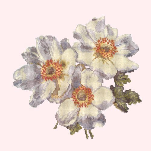 Anemones Needlepoint Kit Elizabeth Bradley Design Cream