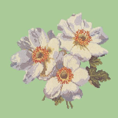 Anemones Needlepoint Kit Elizabeth Bradley Design Pale Green