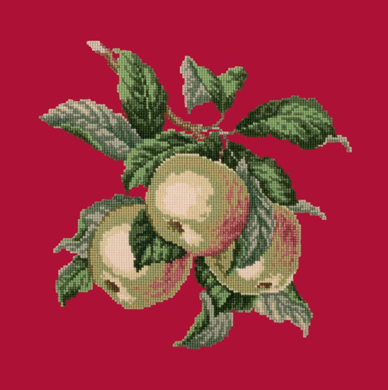 Apples Needlepoint Kit Elizabeth Bradley Design Bright Red