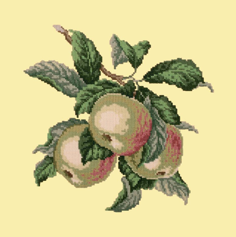 Apples Needlepoint Kit Elizabeth Bradley Design Butter Yellow