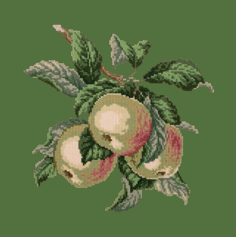 Apples Needlepoint Kit Elizabeth Bradley Design Dark Green