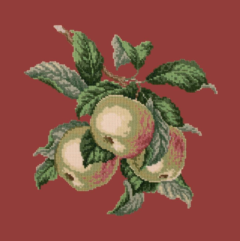 Apples Needlepoint Kit Elizabeth Bradley Design Dark Red