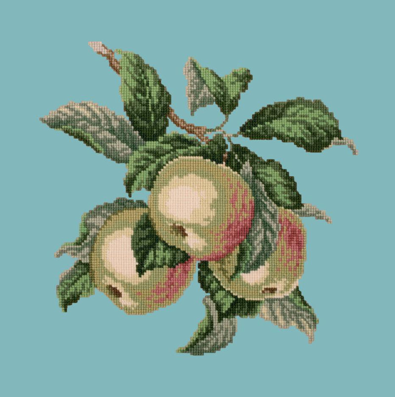 Apples Needlepoint Kit Elizabeth Bradley Design Duck Egg Blue