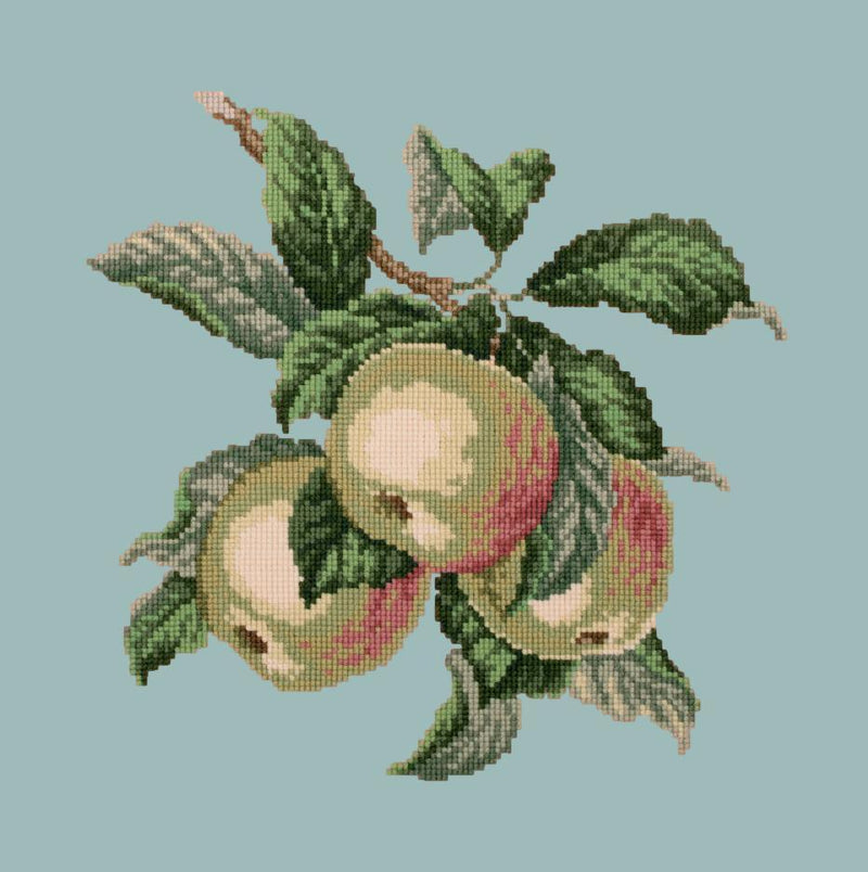Apples Needlepoint Kit Elizabeth Bradley Design Pale Blue