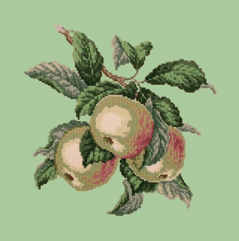 Apples Needlepoint Kit Elizabeth Bradley Design Pale Green