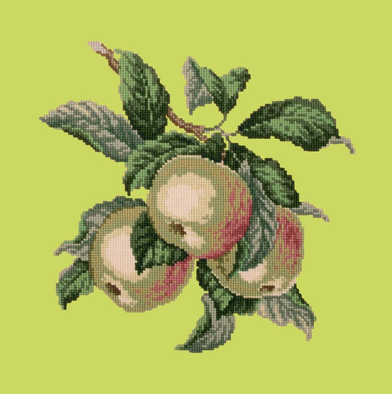 Apples Needlepoint Kit Elizabeth Bradley Design Pale Lime