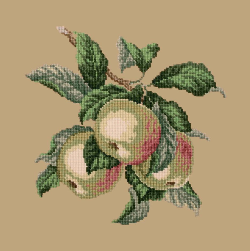 Apples Needlepoint Kit Elizabeth Bradley Design Sand