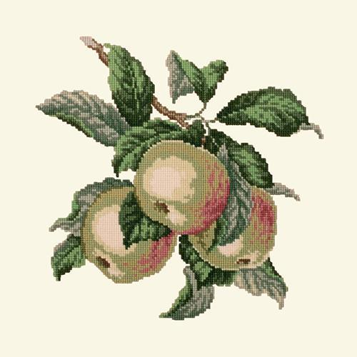Apples Needlepoint Kit Elizabeth Bradley Design Winter White