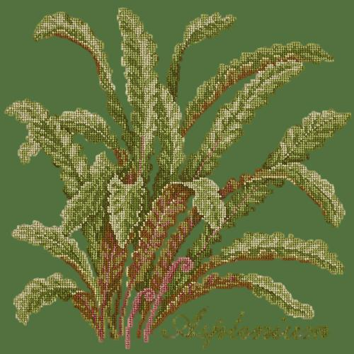 Asplenium Needlepoint Kit Elizabeth Bradley Design Dark Green