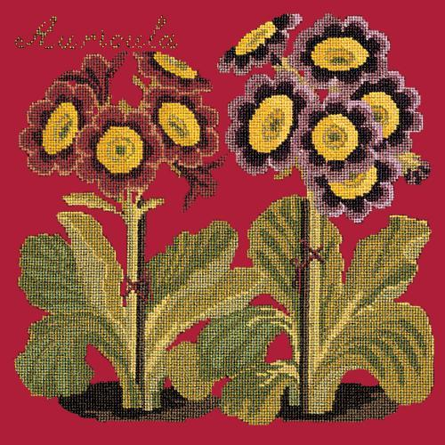 Auricula Needlepoint Kit Elizabeth Bradley Design Bright Red