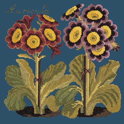 Auricula Needlepoint Kit Elizabeth Bradley Design Dark Blue