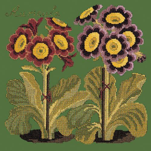 Auricula Needlepoint Kit Elizabeth Bradley Design Dark Green