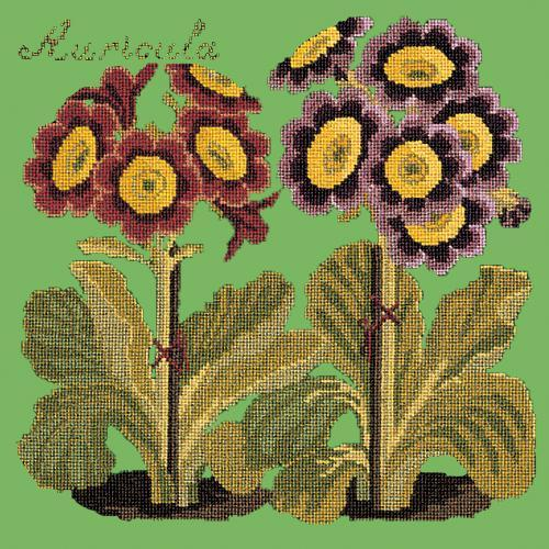 Auricula Needlepoint Kit Elizabeth Bradley Design Grass Green
