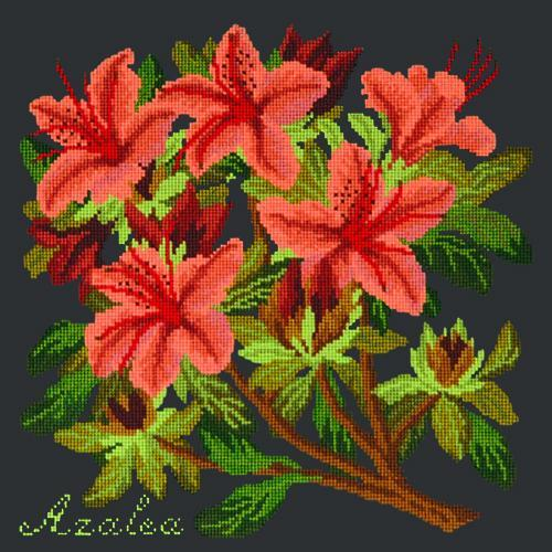 Azalea Needlepoint Kit Elizabeth Bradley Design Black