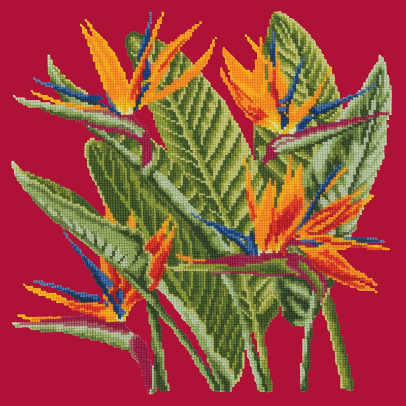 Bird of Paradise Needlepoint Kit Elizabeth Bradley Design Bright Red