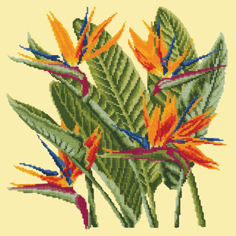 Bird of Paradise Needlepoint Kit Elizabeth Bradley Design Butter Yellow