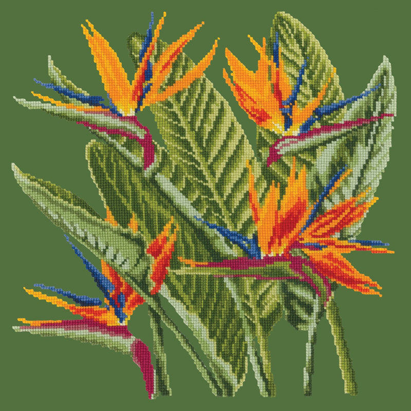 Bird of Paradise Needlepoint Kit Elizabeth Bradley Design Dark Green