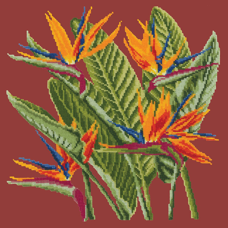 Bird of Paradise Needlepoint Kit Elizabeth Bradley Design Dark Red