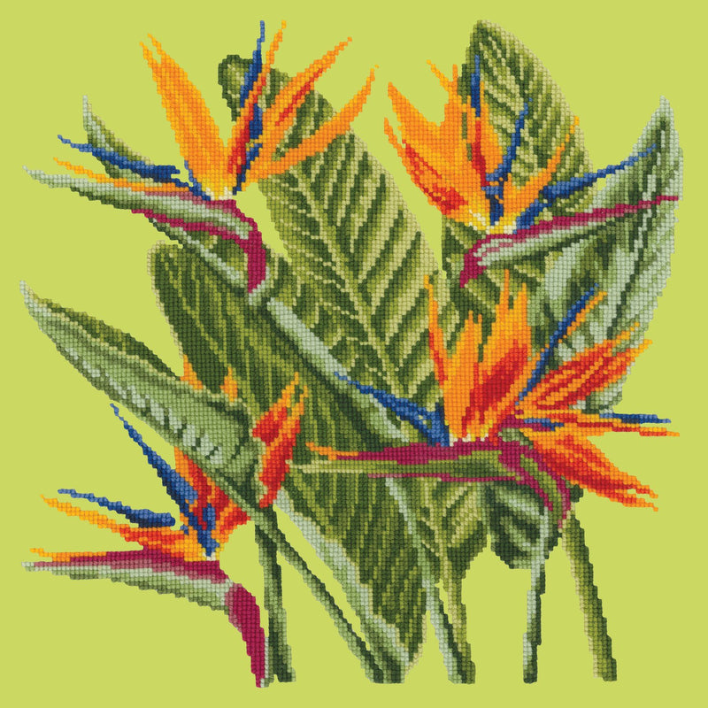 Bird of Paradise Needlepoint Kit Elizabeth Bradley Design Pale Lime