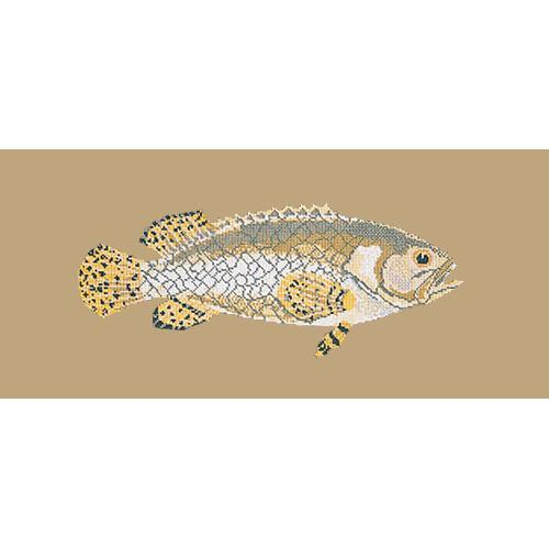 Brindled Grouper Needlepoint Kit Elizabeth Bradley Design Sand