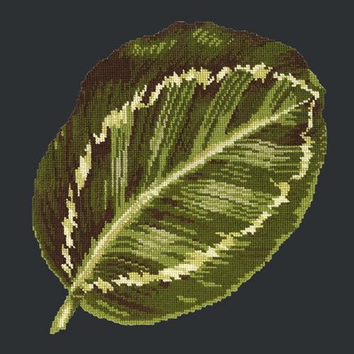Calathea Leaf Needlepoint Kit Elizabeth Bradley Design Black