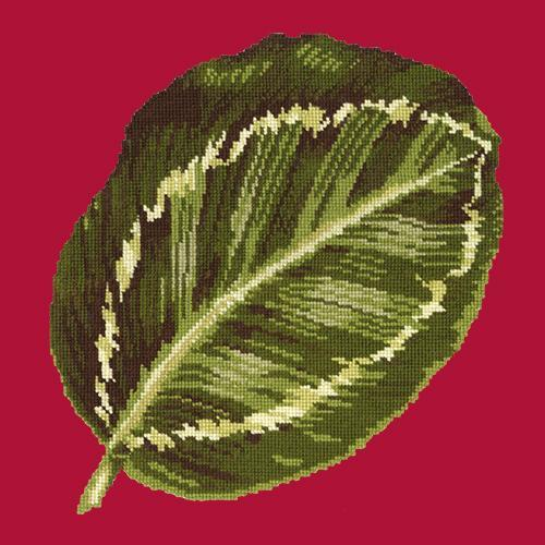Calathea Leaf Needlepoint Kit Elizabeth Bradley Design Bright Red