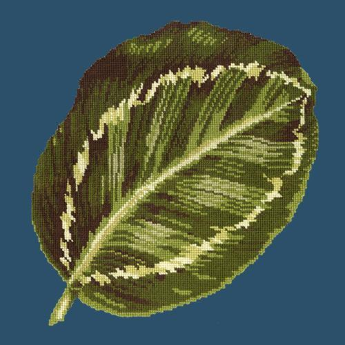 Calathea Leaf Needlepoint Kit Elizabeth Bradley Design Dark Blue