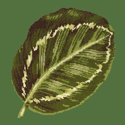 Calathea Leaf Needlepoint Kit Elizabeth Bradley Design Dark Green
