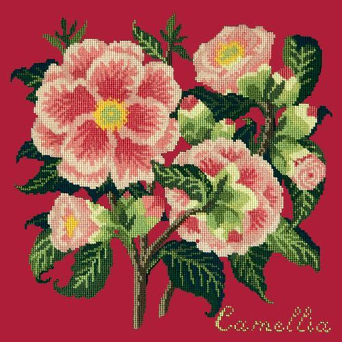 Camellia Needlepoint Kit Elizabeth Bradley Design Bright Red