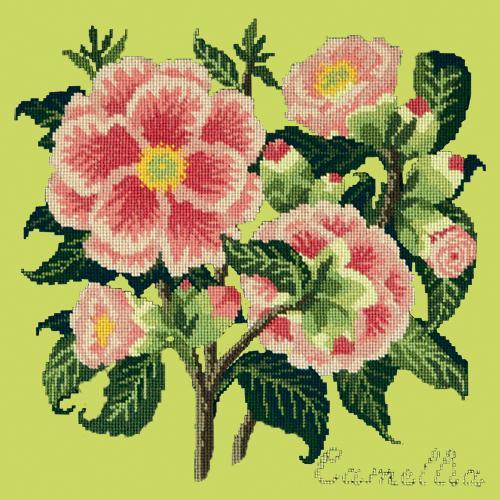Camellia Needlepoint Kit Elizabeth Bradley Design Pale Lime