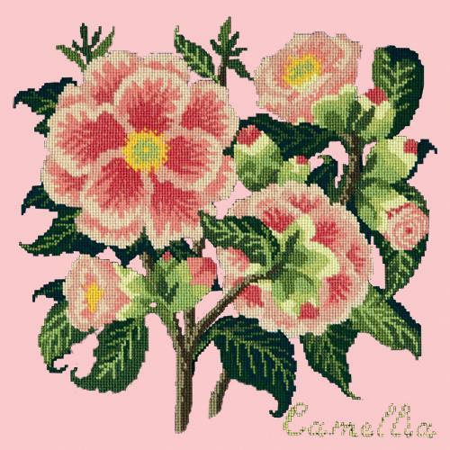 Camellia Needlepoint Kit Elizabeth Bradley Design Pale Rose