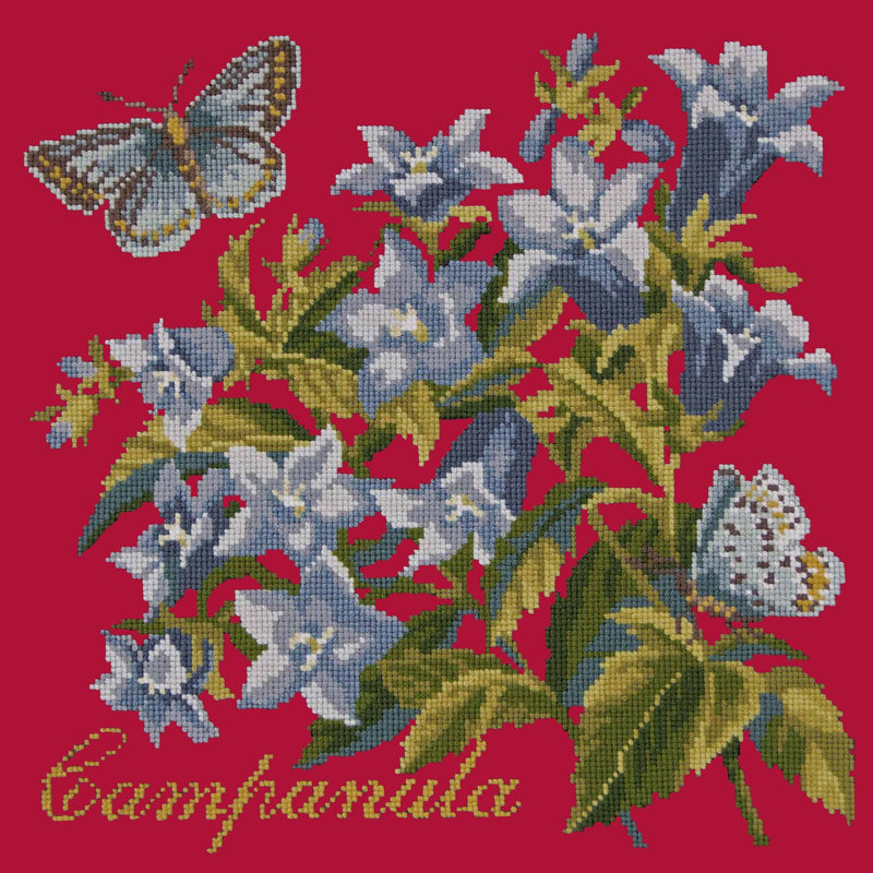 Campanula Needlepoint Kit Elizabeth Bradley Design Bright Red