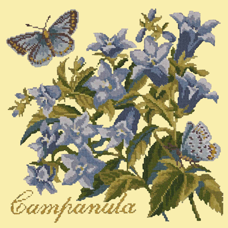 Campanula Needlepoint Kit Elizabeth Bradley Design Butter Yellow
