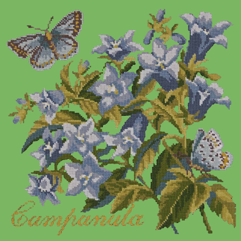 Campanula Needlepoint Kit Elizabeth Bradley Design Grass Green