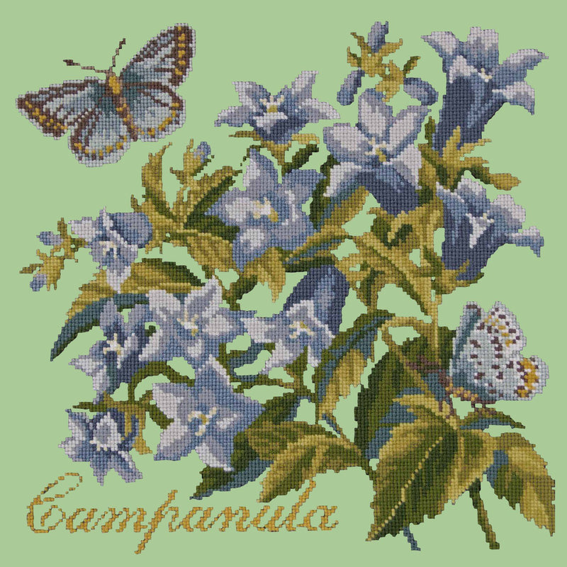 Campanula Needlepoint Kit Elizabeth Bradley Design Pale Green