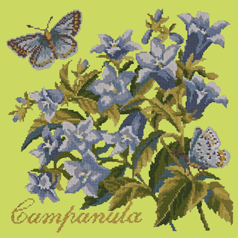 Campanula Needlepoint Kit Elizabeth Bradley Design Pale Lime