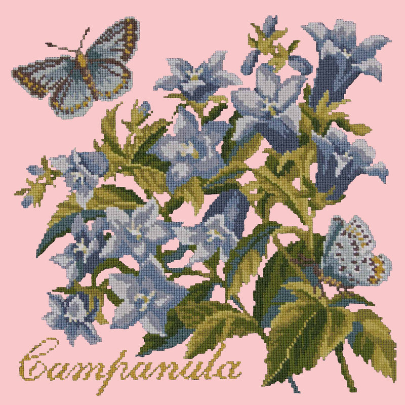Campanula Needlepoint Kit Elizabeth Bradley Design Pale Rose