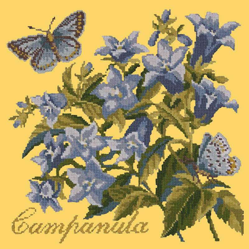 Campanula Needlepoint Kit Elizabeth Bradley Design Sunflower Yellow