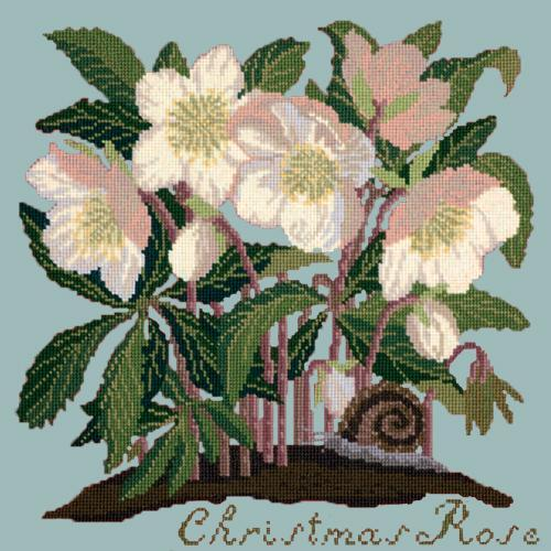 Christmas Rose Needlepoint Kit Elizabeth Bradley Design Pale Blue