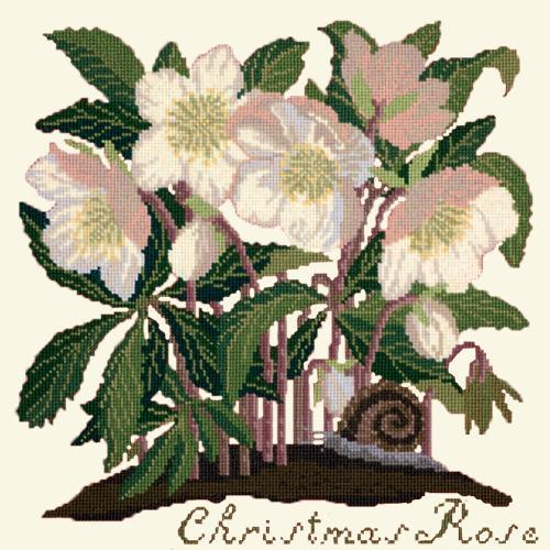 Christmas Rose Needlepoint Kit Elizabeth Bradley Design Winter White