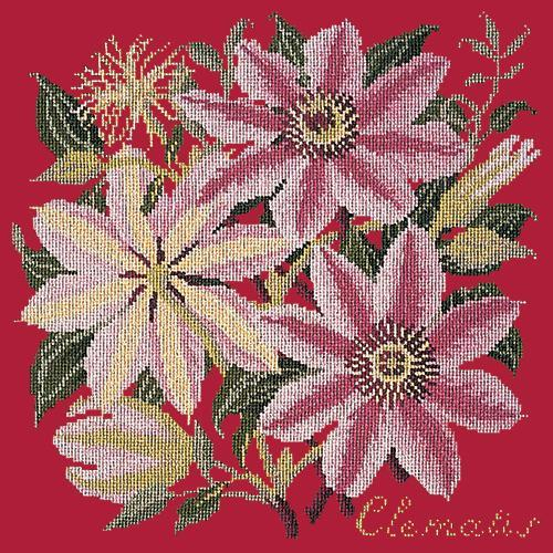Clematis Needlepoint Kit Elizabeth Bradley Design Bright Red