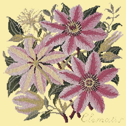 Clematis Needlepoint Kit Elizabeth Bradley Design Butter Yellow
