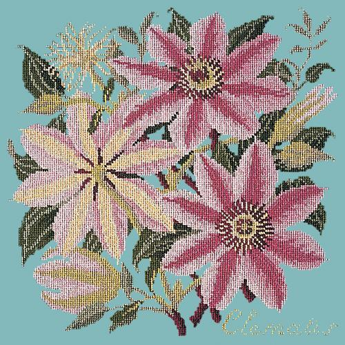 Clematis Needlepoint Kit Elizabeth Bradley Design Duck Egg Blue