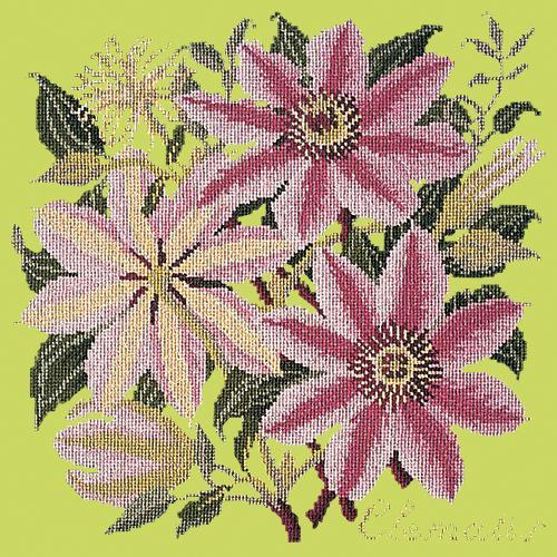 Clematis Needlepoint Kit Elizabeth Bradley Design Pale Lime