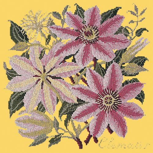 Clematis Needlepoint Kit Elizabeth Bradley Design Sunflower Yellow